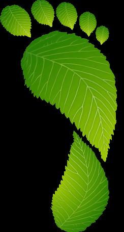 Amprenta de Carbon- OurOffset - Go Green Live Green Work Green