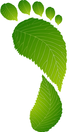 Углеродные следы - OurOffset - Go Green Live Green Work Green